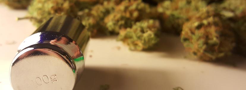 Урожай конопли