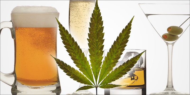 Как успешно лечить алкоголизм с помощью медицинской конопли -  RastaMaster.info