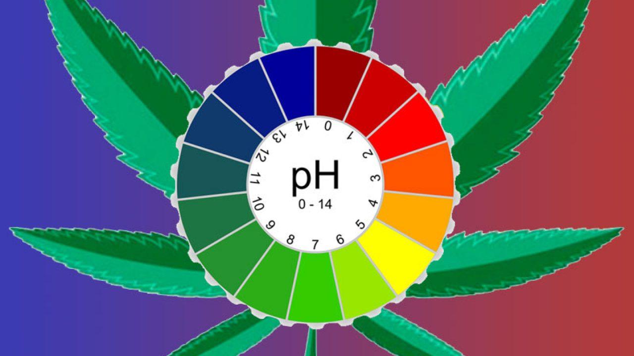 Идеальный ph для конопли интоксикация после марихуаны