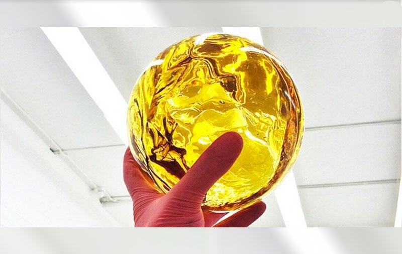Драконье яйцо состоит на 99% из ТГК