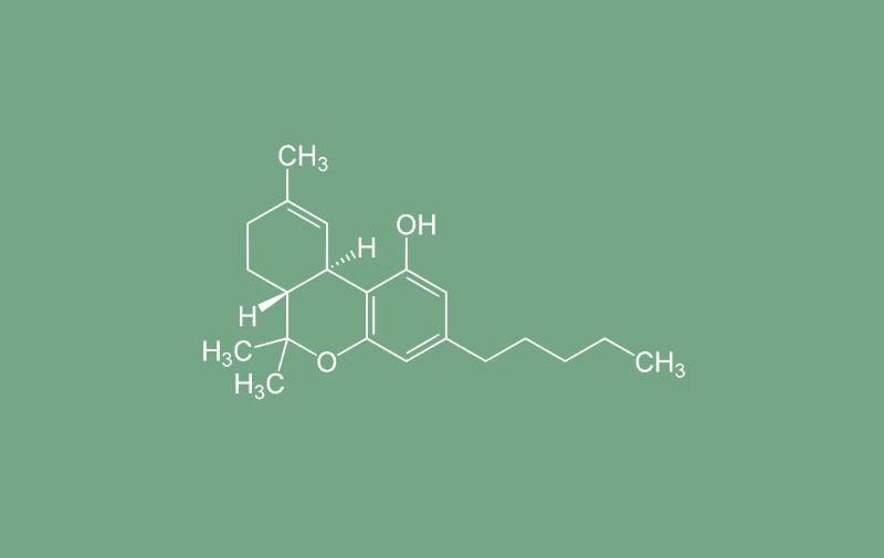 6 важных фактов о ТГК. Строение молекулы.