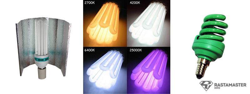 ЭСЛ - лампы отлично подходят для выращивания растений