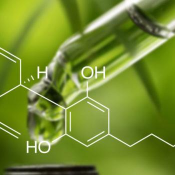 Каннабидиол - формула и масло