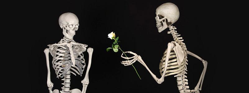 Каннабидиварин (КДВБ) укрепляет скелет