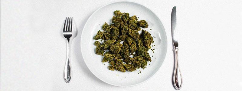 Конопля и похудение как собрать пыльцу с марихуаны