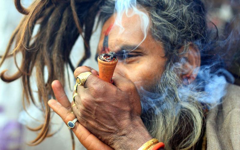 Конопля индия татуировка листа конопли на руке