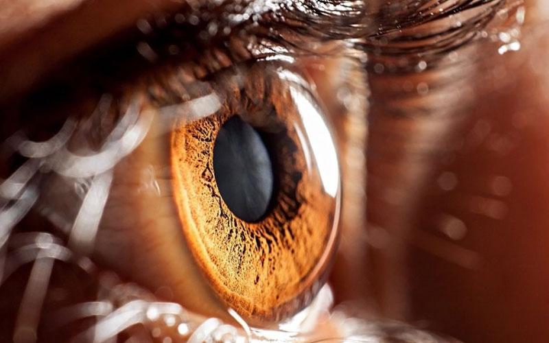 3 факта о глаукоме и марихуане, которых вы наверняка не знали
