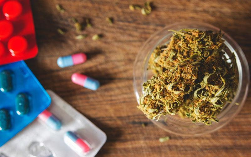 Таблетки или марихуана? Что безопасней? Изображение
